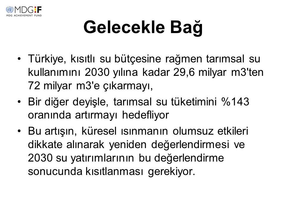 Gelecekle Bağ Türkiye, kısıtlı su bütçesine rağmen tarımsal su kullanımını 2030 yılına kadar 29,6 milyar m3'ten 72 milyar m3'e çıkarmayı, Bir diğer de