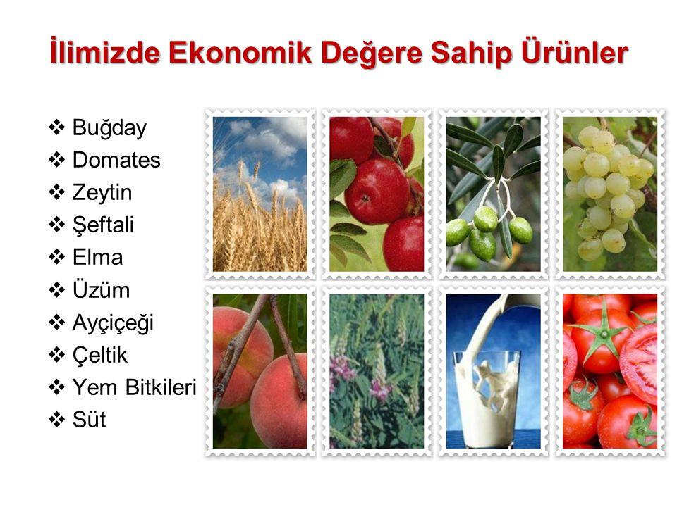 İlimizde Ekonomik Değere Sahip Ürünler  Buğday  Domates  Zeytin  Şeftali  Elma  Üzüm  Ayçiçeği  Çeltik  Yem Bitkileri  Süt