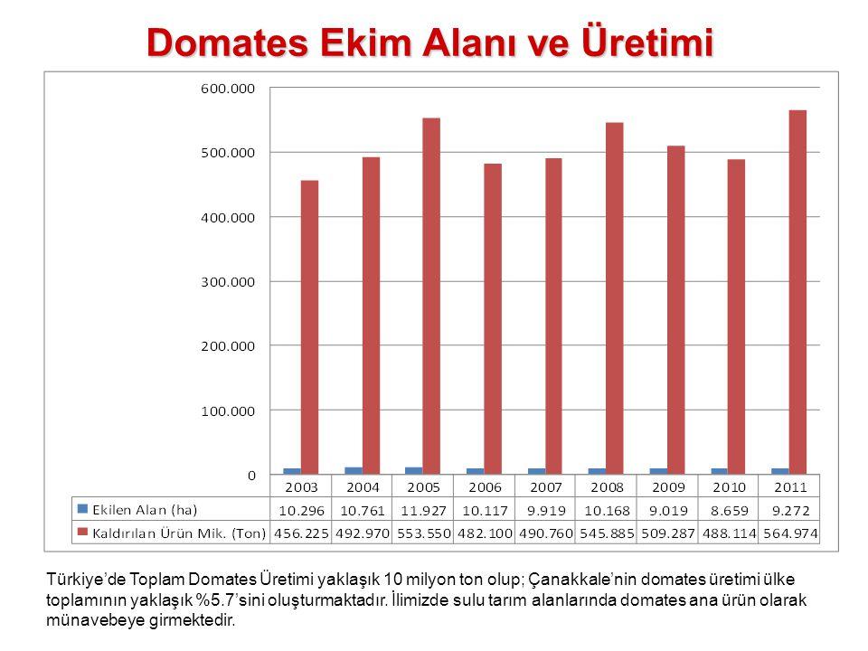 Domates Ekim Alanı ve Üretimi Türkiye'de Toplam Domates Üretimi yaklaşık 10 milyon ton olup; Çanakkale'nin domates üretimi ülke toplamının yaklaşık %5