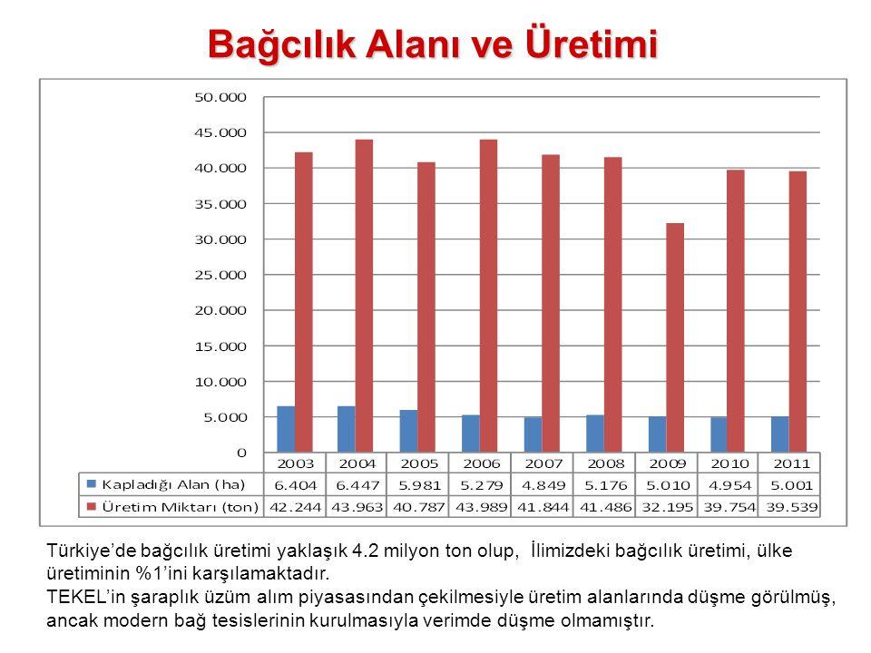 Bağcılık Alanı ve Üretimi Türkiye'de bağcılık üretimi yaklaşık 4.2 milyon ton olup, İlimizdeki bağcılık üretimi, ülke üretiminin %1'ini karşılamaktadı