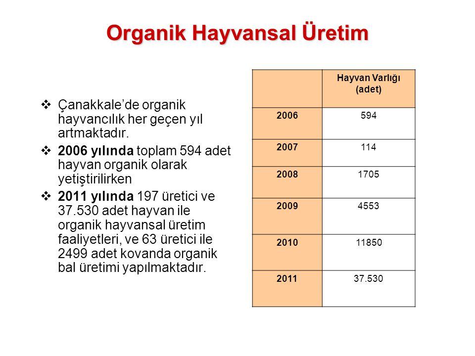  Çanakkale'de organik hayvancılık her geçen yıl artmaktadır.  2006 yılında toplam 594 adet hayvan organik olarak yetiştirilirken  2011 yılında 197