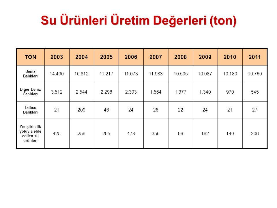 Su Ürünleri Üretim Değerleri (ton) TON200320042005200620072008200920102011 Deniz Balıkları 14.49010.81211.21711.07311.98310.50510.08710.18010.760 Diğe