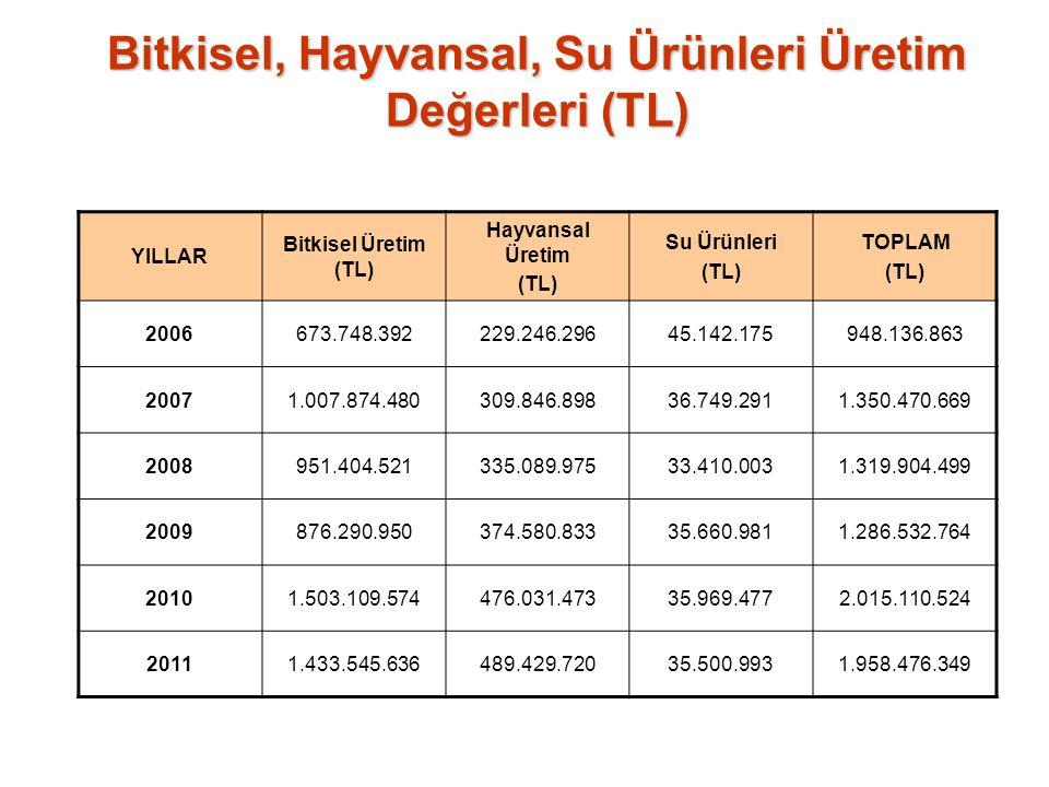 Bitkisel, Hayvansal, Su Ürünleri Üretim Değerleri (TL) YILLAR Bitkisel Üretim (TL) Hayvansal Üretim (TL) Su Ürünleri (TL) TOPLAM (TL) 2006673.748.3922