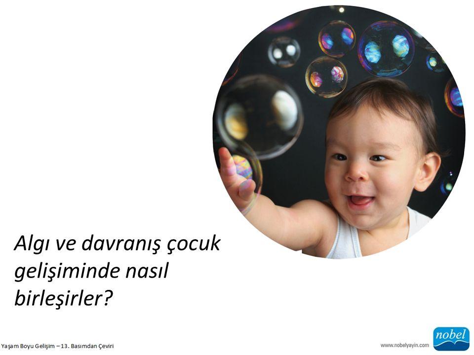 Algı ve davranış çocuk gelişiminde nasıl birleşirler?
