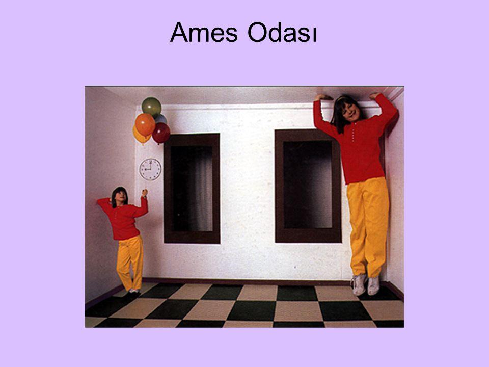 Ames Odası