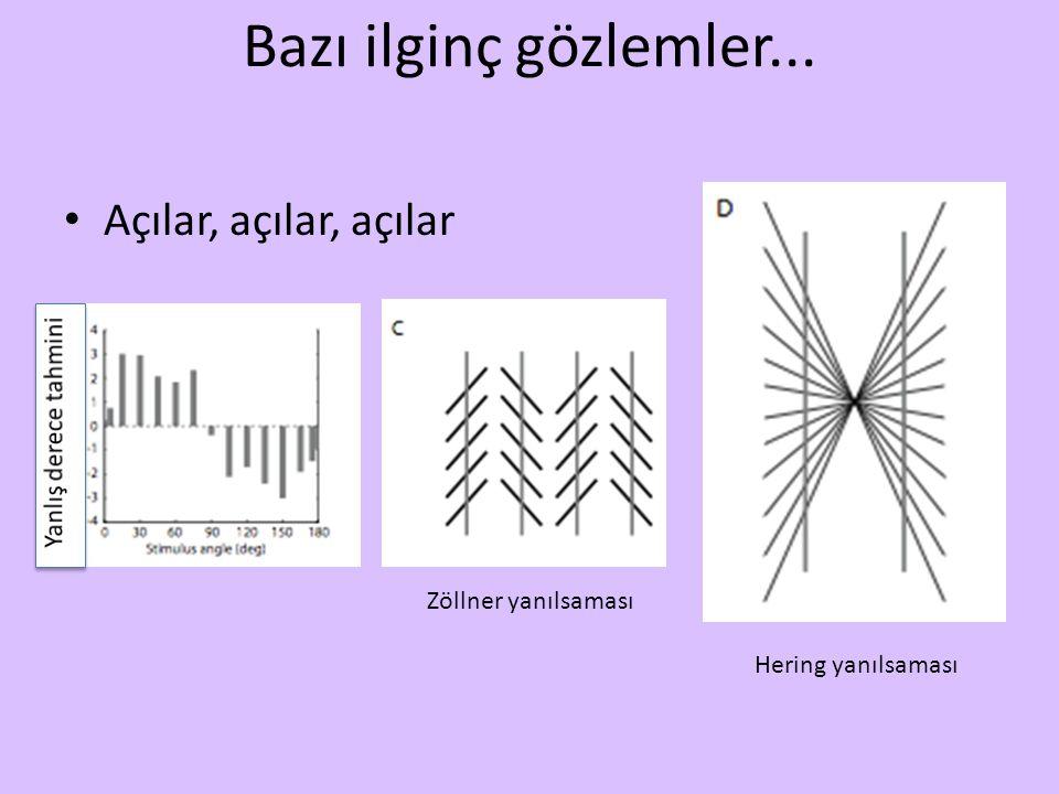 Bazı ilginç gözlemler... Açılar, açılar, açılar Zöllner yanılsaması Hering yanılsaması