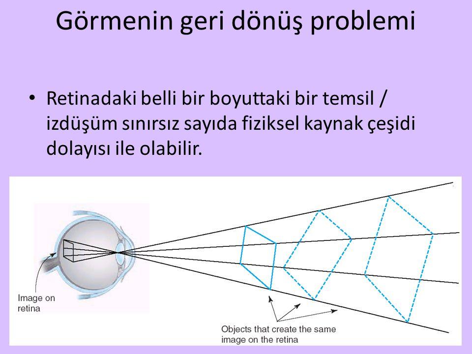 Görmenin geri dönüş problemi Retinadaki belli bir boyuttaki bir temsil / izdüşüm sınırsız sayıda fiziksel kaynak çeşidi dolayısı ile olabilir.