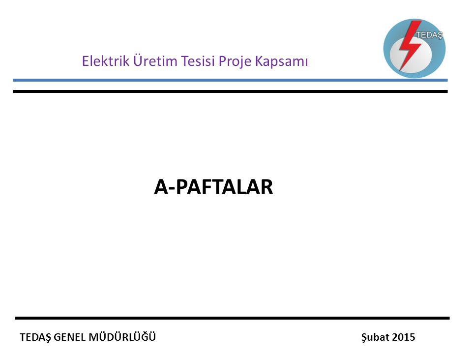 Elektrik Üretim Tesisi Proje Kapsamı A-PAFTALAR TEDAŞ GENEL MÜDÜRLÜĞÜ Şubat 2015