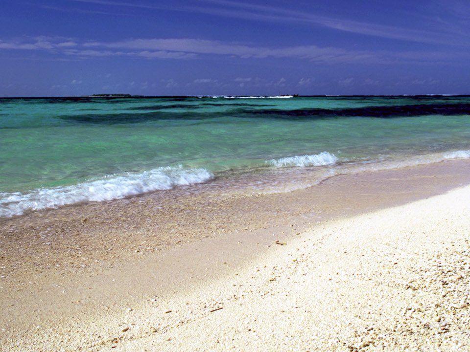 Kıyılar neden önemli.Kıyı, hem kara yönü, hem de deniz yönüyle önemli.