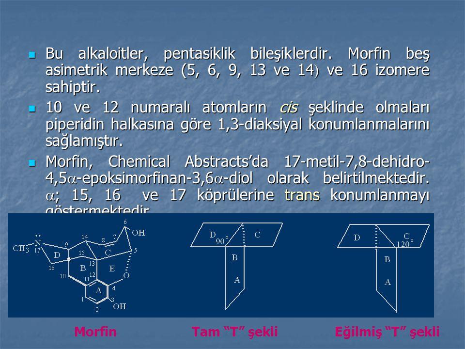 Bu alkaloitler, pentasiklik bileşiklerdir.