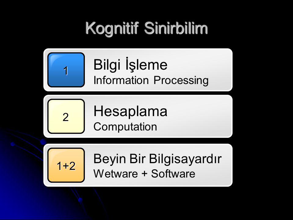 Kognitif Sinirbilim 1 2 1+2 Bilgi İşleme Information Processing Beyin Bir Bilgisayardır Wetware + Software Hesaplama Computation