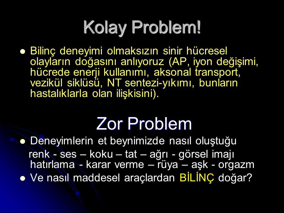 Kolay Problem.
