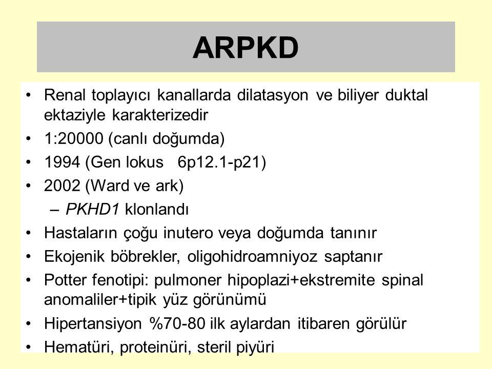 ARPKD Renal toplayıcı kanallarda dilatasyon ve biliyer duktal ektaziyle karakterizedir 1:20000 (canlı doğumda) 1994 (Gen lokus 6p12.1-p21) 2002 (Ward