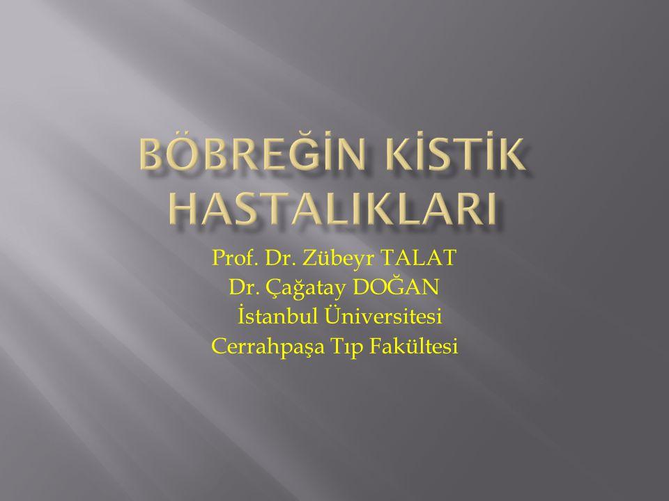 Prof. Dr. Zübeyr TALAT Dr. Çağatay DOĞAN İstanbul Üniversitesi Cerrahpaşa Tıp Fakültesi