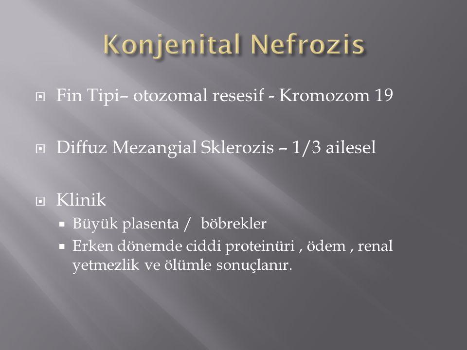  Fin Tipi– otozomal resesif - Kromozom 19  Diffuz Mezangial Sklerozis – 1/3 ailesel  Klinik  Büyük plasenta / böbrekler  Erken dönemde ciddi proteinüri, ödem, renal yetmezlik ve ölümle sonuçlanır.