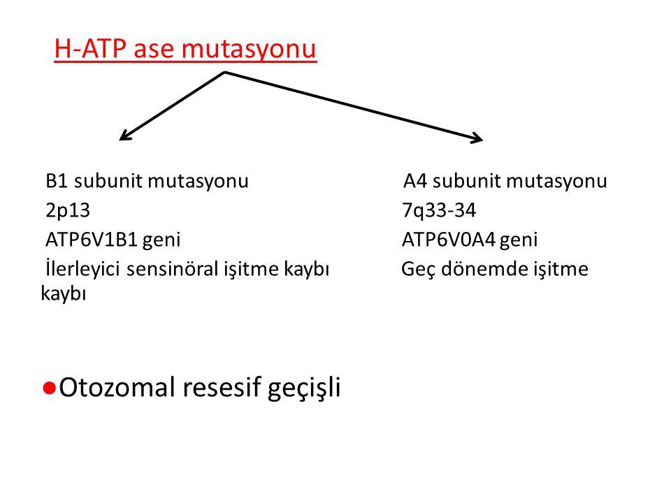 H-ATP ase mutasyonu B1 subunit mutasyonu A4 subunit mutasyonu 2p13 7q33-34 ATP6V1B1 geni ATP6V0A4 geni İlerleyici sensinöral işitme kaybı Geç dönemde işitme kaybı ●Otozomal resesif geçişli