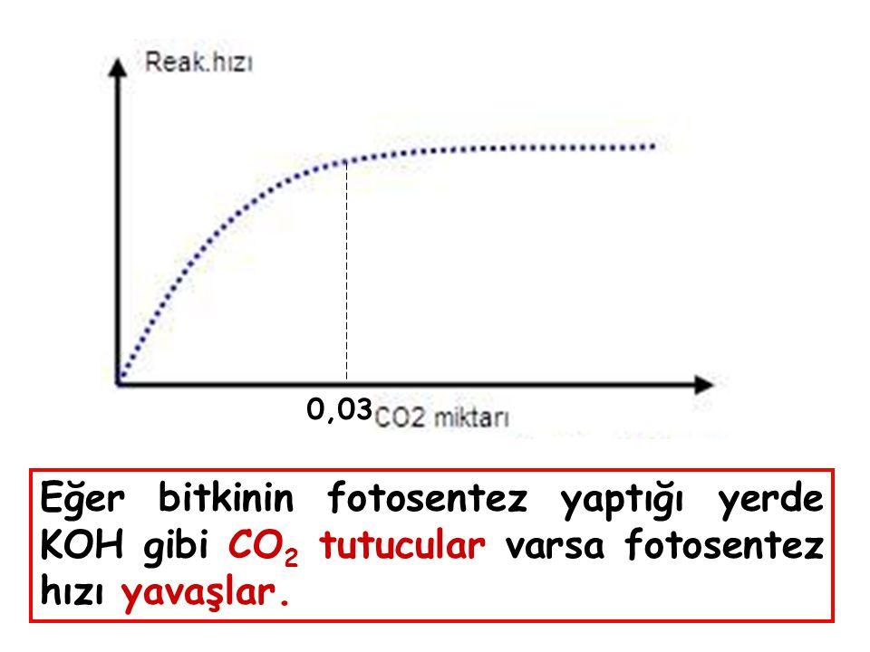 0,03 Eğer bitkinin fotosentez yaptığı yerde KOH gibi CO 2 tutucular varsa fotosentez hızı yavaşlar.