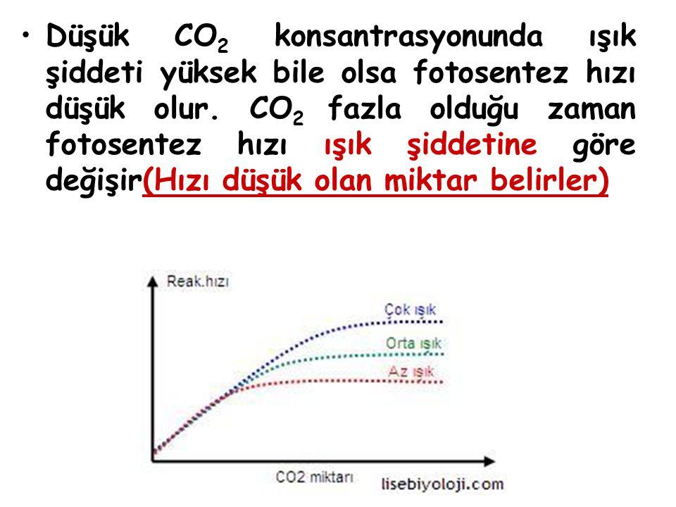Düşük CO 2 konsantrasyonunda ışık şiddeti yüksek bile olsa fotosentez hızı düşük olur. CO 2 fazla olduğu zaman fotosentez hızı ışık şiddetine göre değ