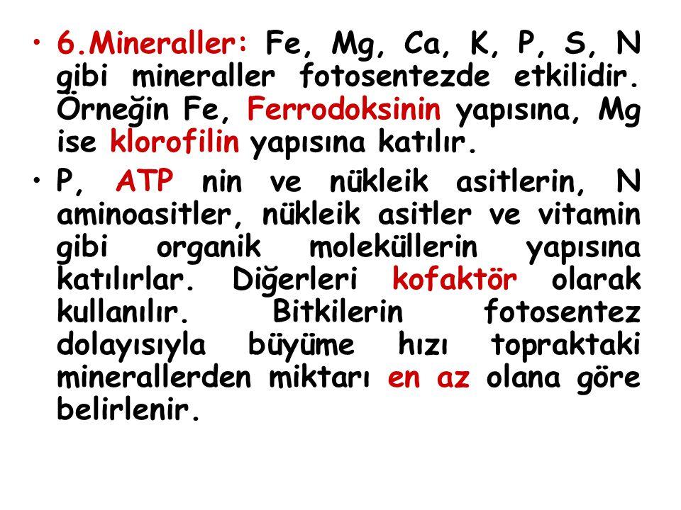 6.Mineraller: Fe, Mg, Ca, K, P, S, N gibi mineraller fotosentezde etkilidir. Örneğin Fe, Ferrodoksinin yapısına, Mg ise klorofilin yapısına katılır. P