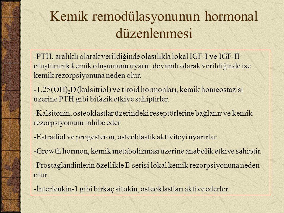 Kemik remodülasyonunun hormonal düzenlenmesi -PTH, aralıklı olarak verildiğinde olasılıkla lokal IGF-I ve IGF-II oluşturarak kemik oluşumunu uyarır; d