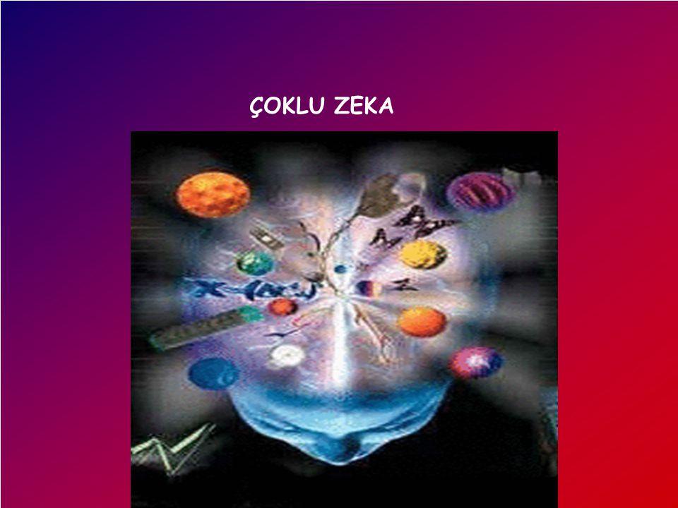 Görsel/Uzamsal Zeka ile öğrenenler: -Şekil, zemin ve renklere karşı duyarlılığa, -Zihinsel imgelem gücüne, -Resim, çizim, kroki, karikatür, heykel, maket vb.