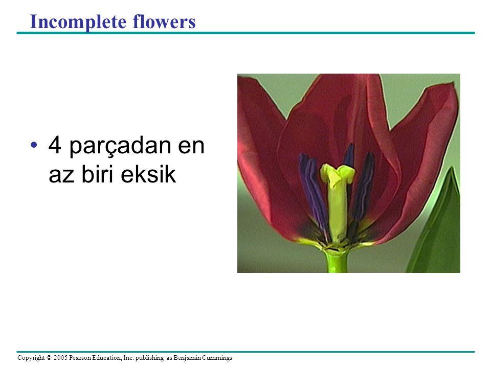 Copyright © 2005 Pearson Education, Inc. publishing as Benjamin Cummings Incomplete flowers 4 parçadan en az biri eksik