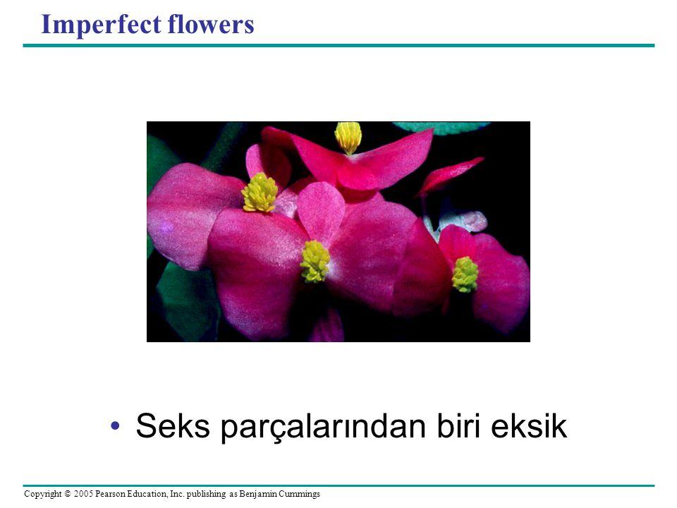 Copyright © 2005 Pearson Education, Inc. publishing as Benjamin Cummings Imperfect flowers Seks parçalarından biri eksik