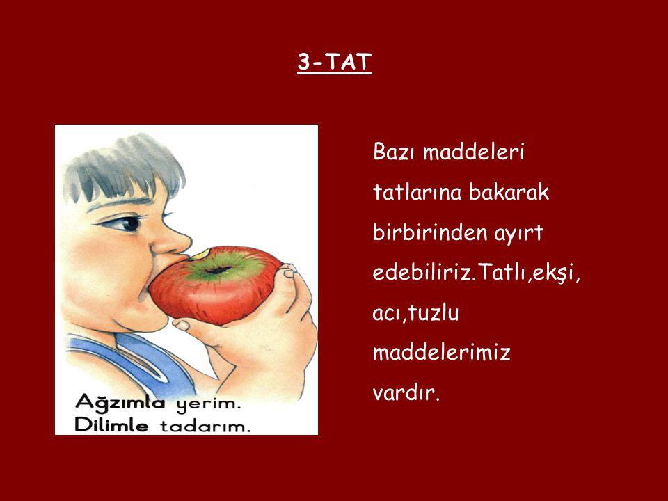 3-TAT Bazı maddeleri tatlarına bakarak birbirinden ayırt edebiliriz.Tatlı,ekşi, acı,tuzlu maddelerimiz vardır.