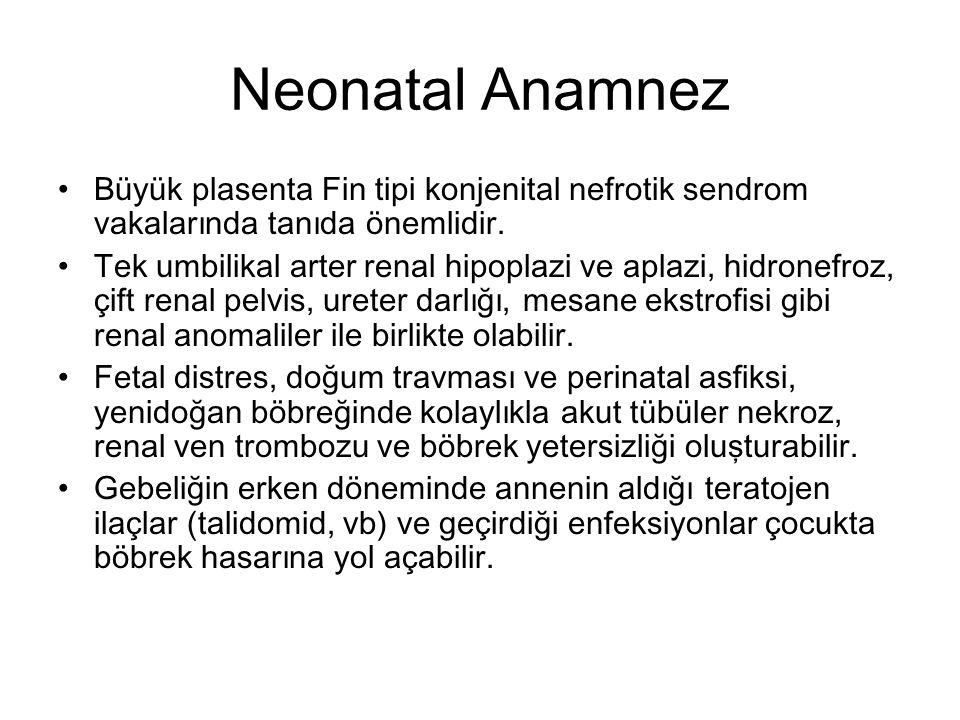 Neonatal Anamnez Büyük plasenta Fin tipi konjenital nefrotik sendrom vakalarında tanıda önemlidir. Tek umbilikal arter renal hipoplazi ve aplazi, hidr