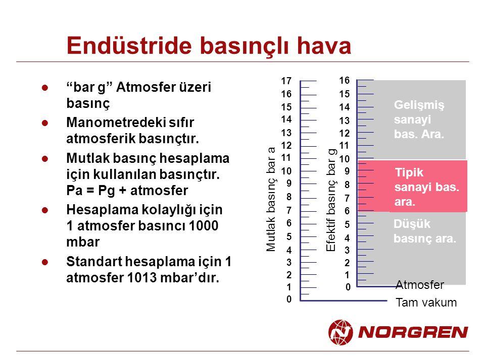 """Endüstride basınçlı hava """"bar g"""" Atmosfer üzeri basınç Manometredeki sıfır atmosferik basınçtır. Mutlak basınç hesaplama için kullanılan basınçtır. Pa"""