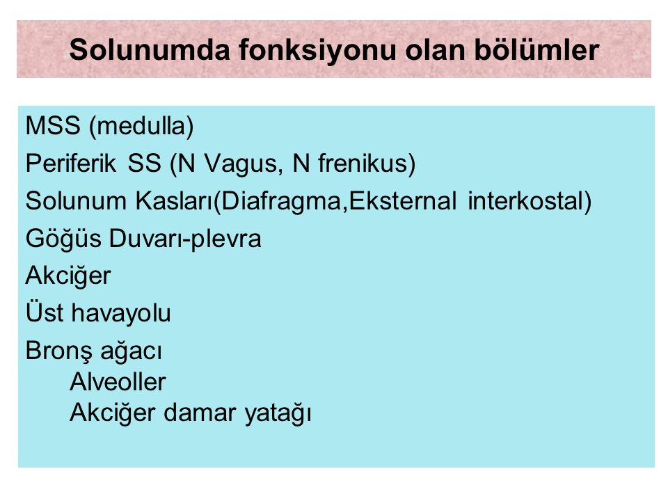 SOLUNUM SİSTEMİ BÖLÜMLERİ MSS (medulla) Periferik SS (N Vagus, N frenikus) Solunum Kasları(Diafragma,Eksternal interkostal) Göğüs Duvarı-plevra Akciğe