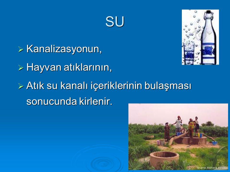 SU  Kanalizasyonun,  Hayvan atıklarının,  Atık su kanalı içeriklerinin bulaşması sonucunda kirlenir.