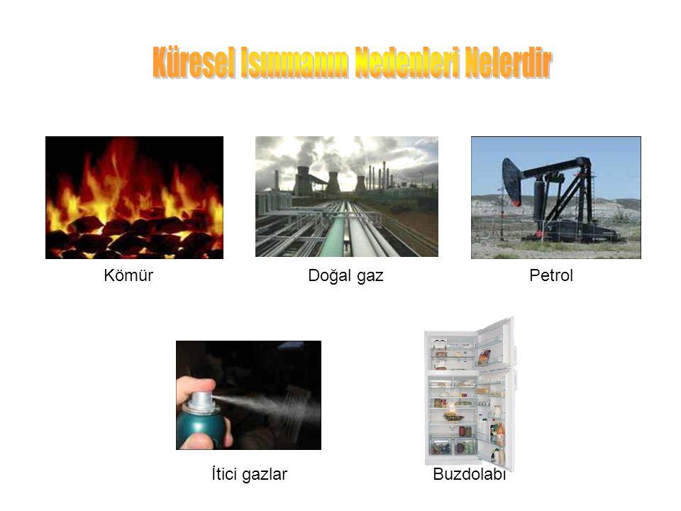 KömürPetrolDoğal gaz İtici gazlarBuzdolabı