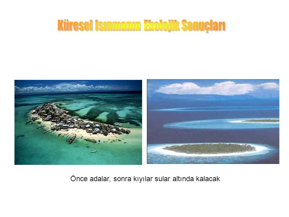 Önce adalar, sonra kıyılar sular altında kalacak