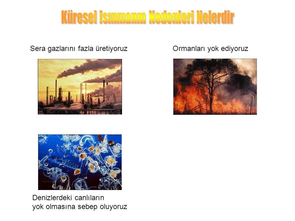Sera gazlarını fazla üretiyoruz Denizlerdeki canlıların yok olmasına sebep oluyoruz Ormanları yok ediyoruz