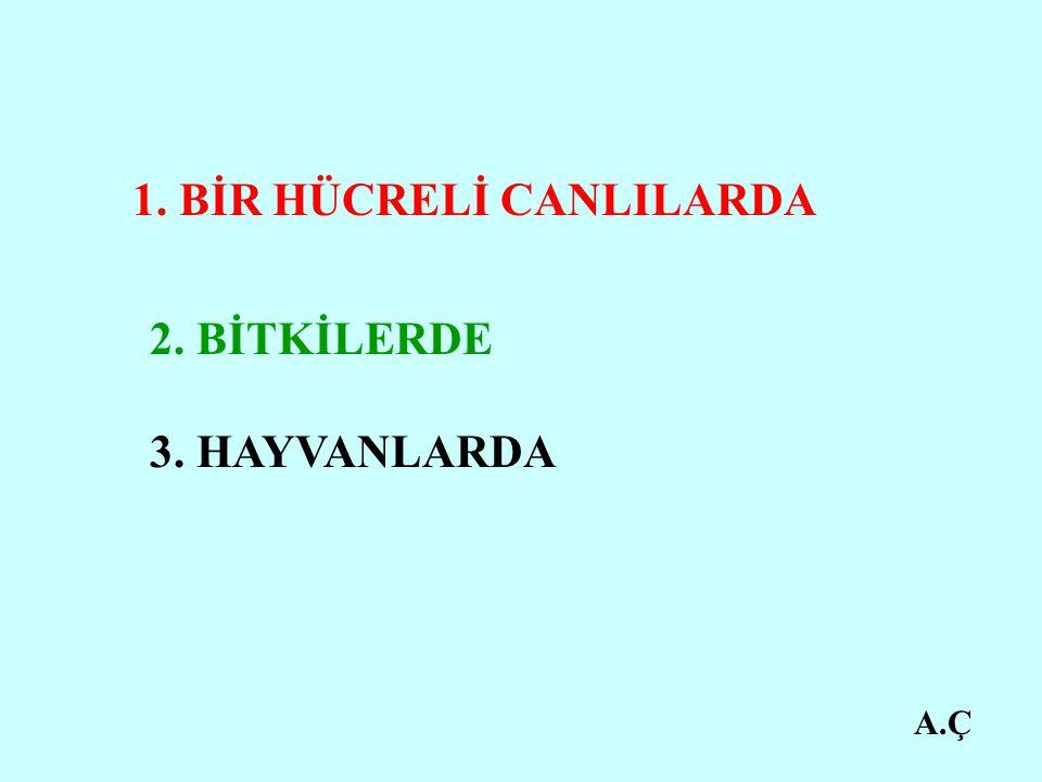 A.Ç 1. BİR HÜCRELİ CANLILARDA 2. BİTKİLERDE 3. HAYVANLARDA