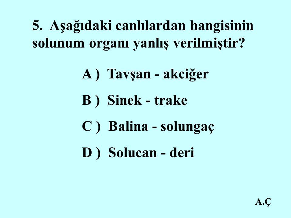 A.Ç 5.Aşağıdaki canlılardan hangisinin solunum organı yanlış verilmiştir.