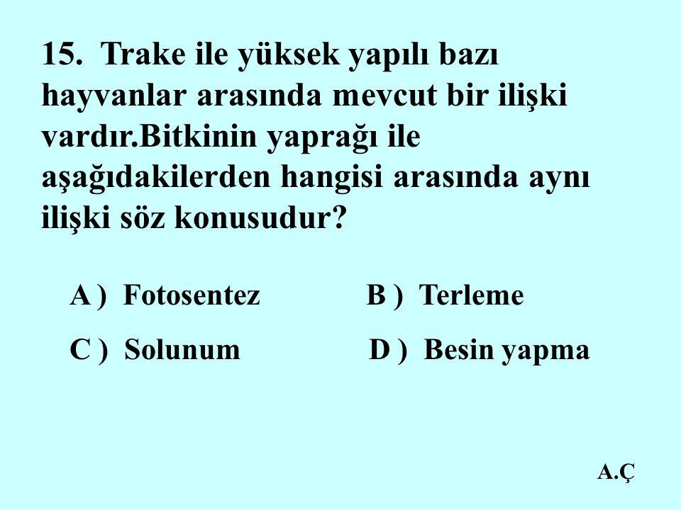 A.Ç 15.