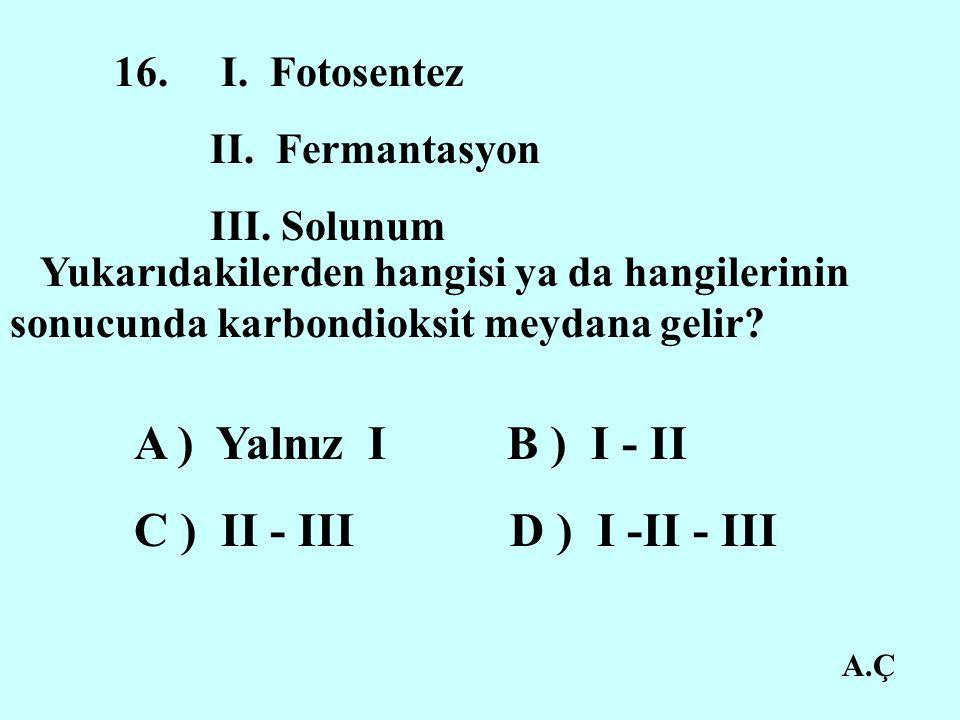 A.Ç 16.I. Fotosentez II. Fermantasyon III.