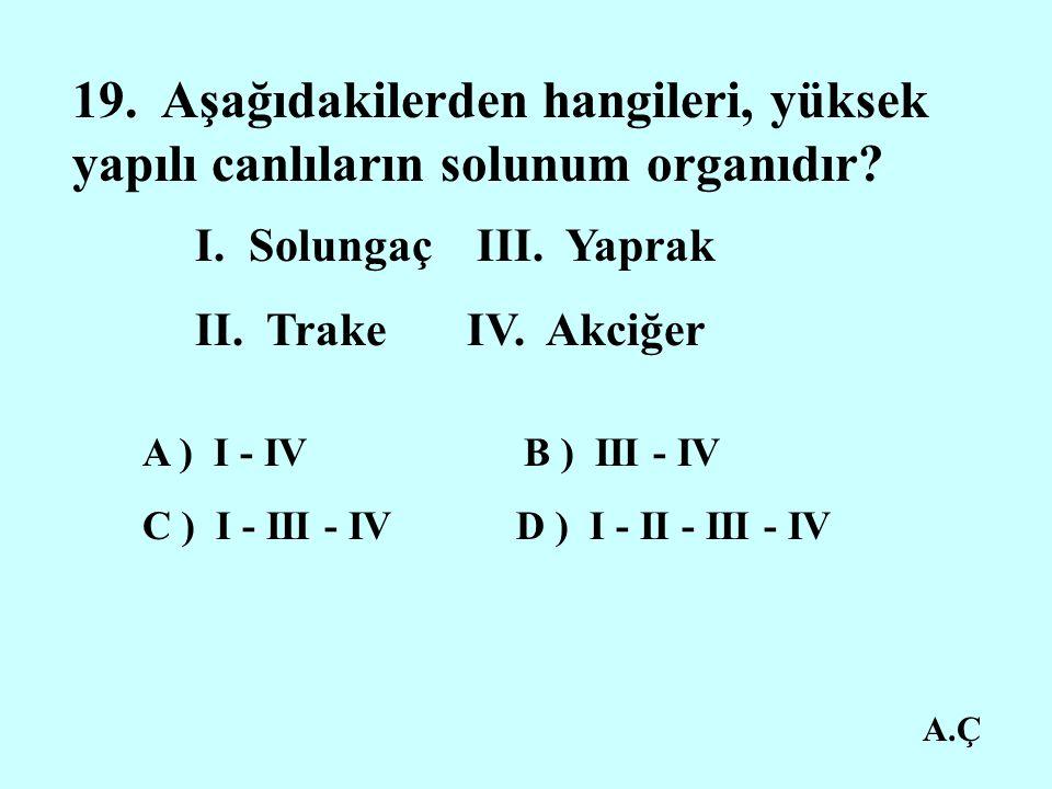 A.Ç 19.Aşağıdakilerden hangileri, yüksek yapılı canlıların solunum organıdır.