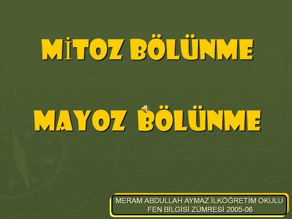 m-aymaz fen bilgisi zümresi mayoz bölünme Kısacası… Mitoz bölünme geçiren hücreler tekrar mitoz bölünme geçirebilir.Mitoz bölünmede oluşan hücre sayısı 2n2n formülü ile bulunur.(n geçirilen mitoz bölünme sayısıdır.