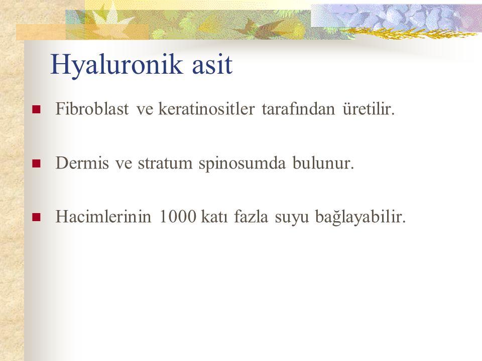 Hyaluronik asit Fibroblast ve keratinositler tarafından üretilir. Dermis ve stratum spinosumda bulunur. Hacimlerinin 1000 katı fazla suyu bağlayabilir