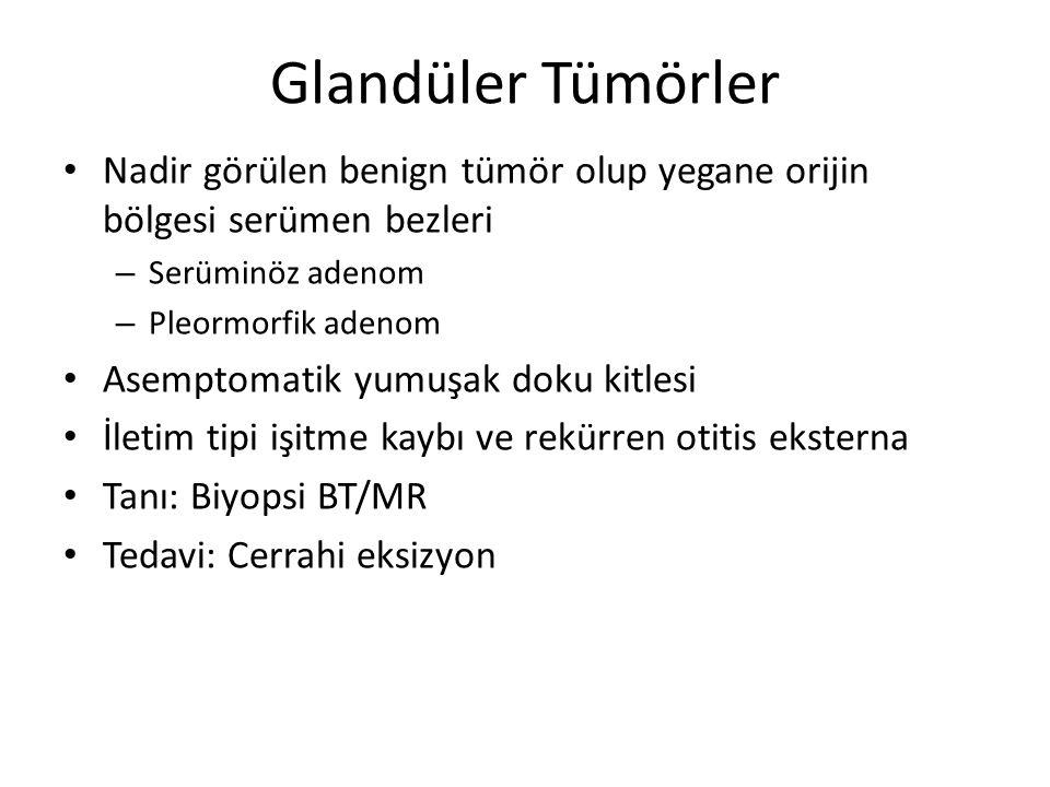 Glandüler Tümörler Nadir görülen benign tümör olup yegane orijin bölgesi serümen bezleri – Serüminöz adenom – Pleormorfik adenom Asemptomatik yumuşak