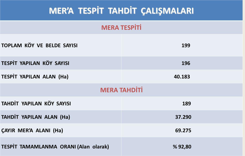 18 MER'A TESPİT TAHDİT ÇALIŞMALARI MERA TESPİTİ TOPLAM KÖY VE BELDE SAYISI 199 TESPİT YAPILAN KÖY SAYISI 196 TESPİT YAPILAN ALAN (Ha)40.183 MERA TAHDİTİ TAHDİT YAPILAN KÖY SAYISI 189 TAHDİT YAPILAN ALAN (Ha) 37.290 ÇAYIR MER'A ALANI (Ha) 69.275 TESPİT TAMAMLANMA ORANI (Alan olarak)% 92,80
