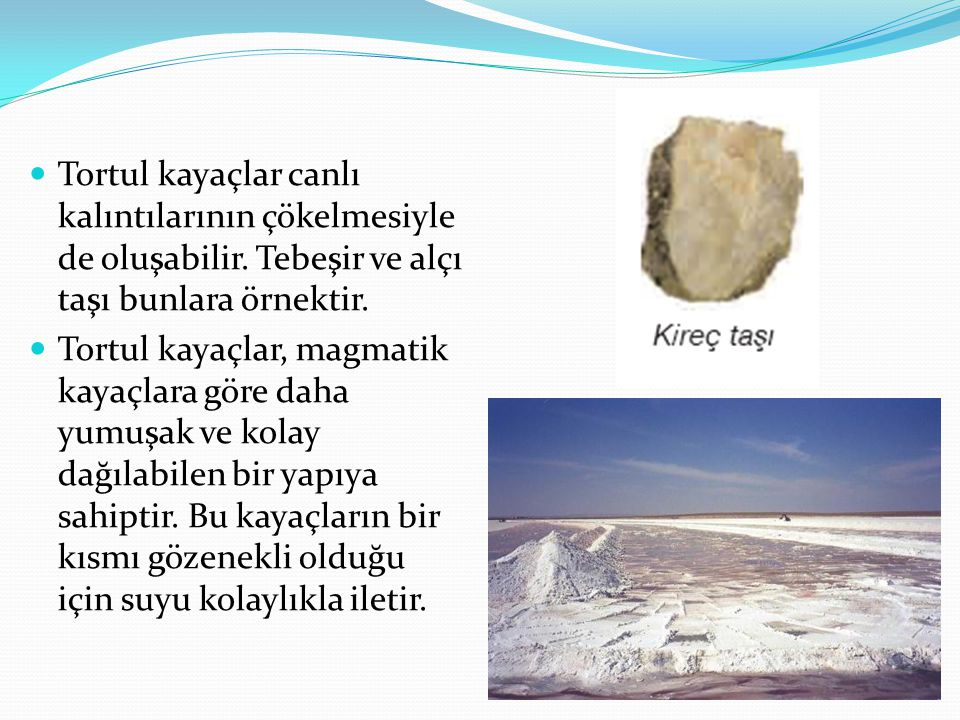 Tortul kayaçlar canlı kalıntılarının çökelmesiyle de oluşabilir. Tebeşir ve alçı taşı bunlara örnektir. Tortul kayaçlar, magmatik kayaçlara göre daha
