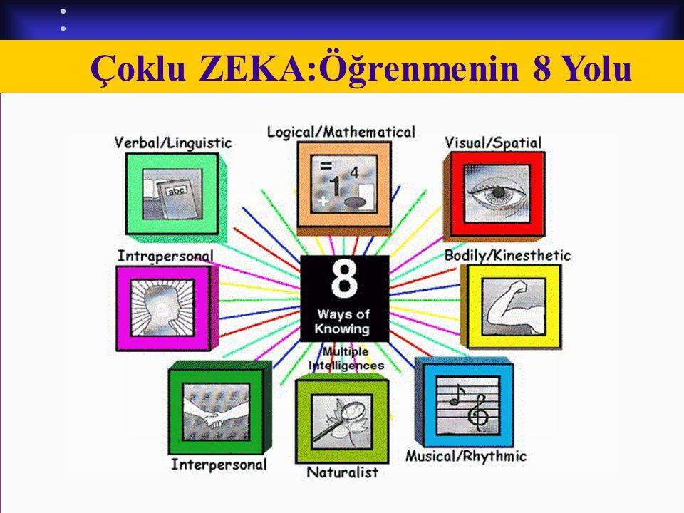 Dersimiz.Com Çoklu ZEKA:Öğrenmenin 8 Yolu