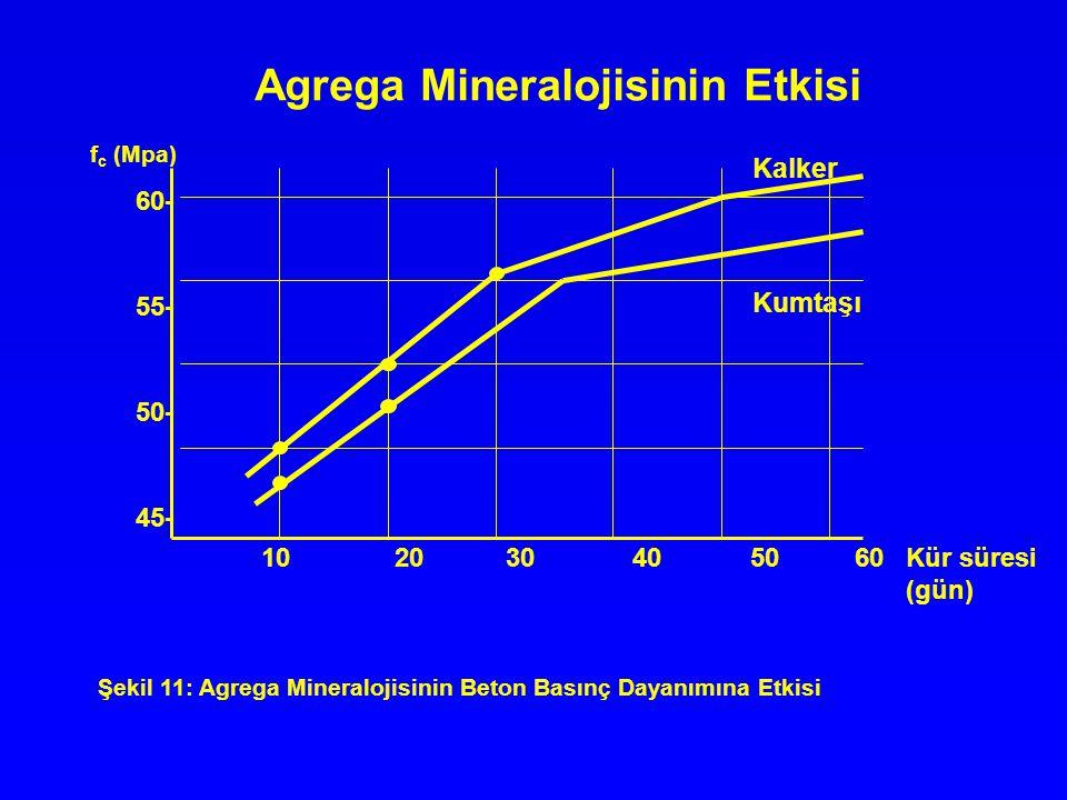 Agrega Mineralojisinin Etkisi 10 20 30 40 50 60 Kür süresi (gün) 60- 55- 50- 45- f c (Mpa) Kalker Kumtaşı Şekil 11: Agrega Mineralojisinin Beton Basın