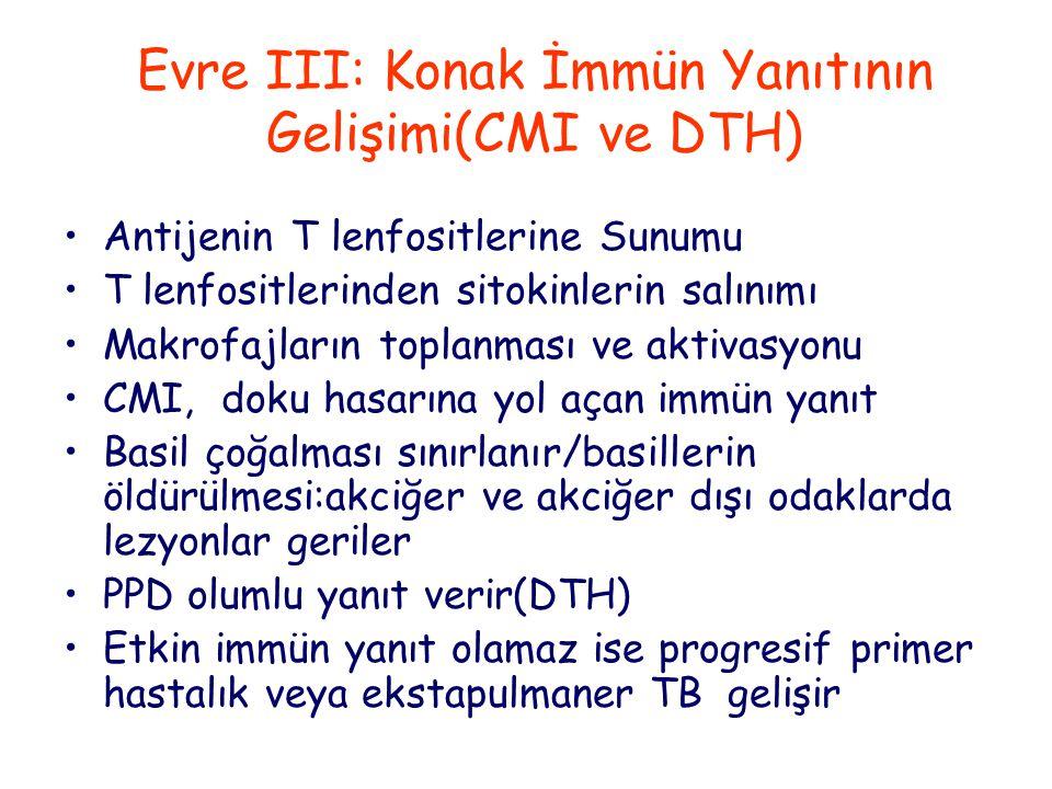 Evre III: Konak İmmün Yanıtının Gelişimi(CMI ve DTH) Antijenin T lenfositlerine Sunumu T lenfositlerinden sitokinlerin salınımı Makrofajların toplanması ve aktivasyonu CMI, doku hasarına yol açan immün yanıt Basil çoğalması sınırlanır/basillerin öldürülmesi:akciğer ve akciğer dışı odaklarda lezyonlar geriler PPD olumlu yanıt verir(DTH) Etkin immün yanıt olamaz ise progresif primer hastalık veya ekstapulmaner TB gelişir
