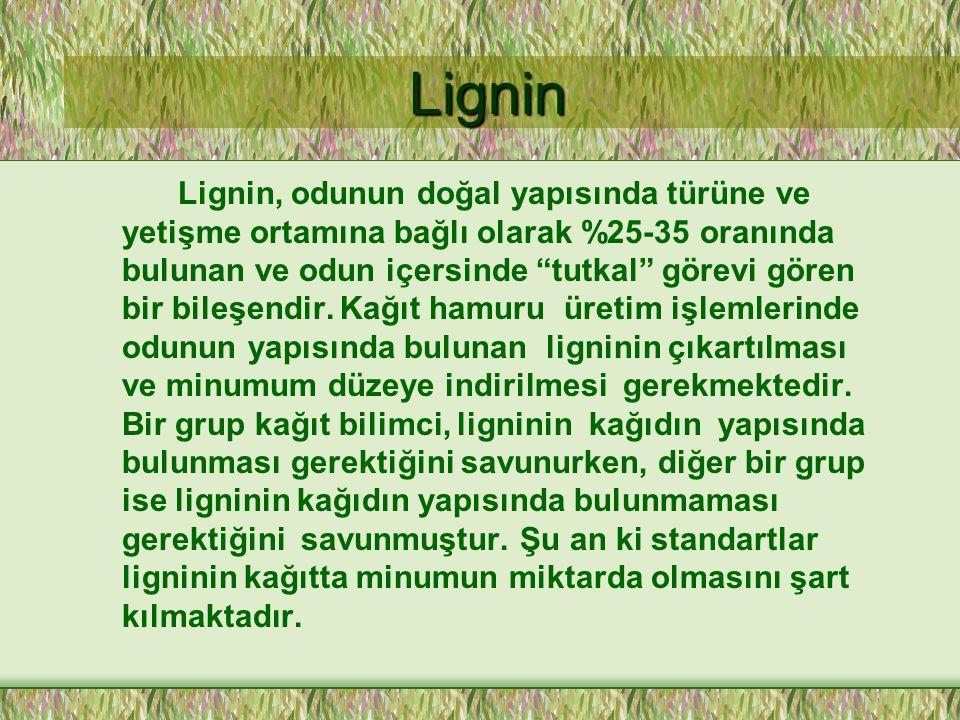 Lignin Lignin Lignin, odunun doğal yapısında türüne ve yetişme ortamına bağlı olarak %25-35 oranında bulunan ve odun içersinde tutkal görevi gören bir bileşendir.