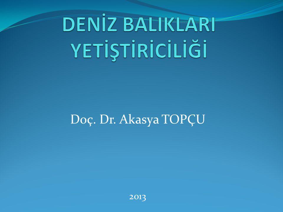Doç. Dr. Akasya TOPÇU 2013